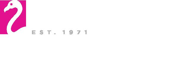 Franz Witte