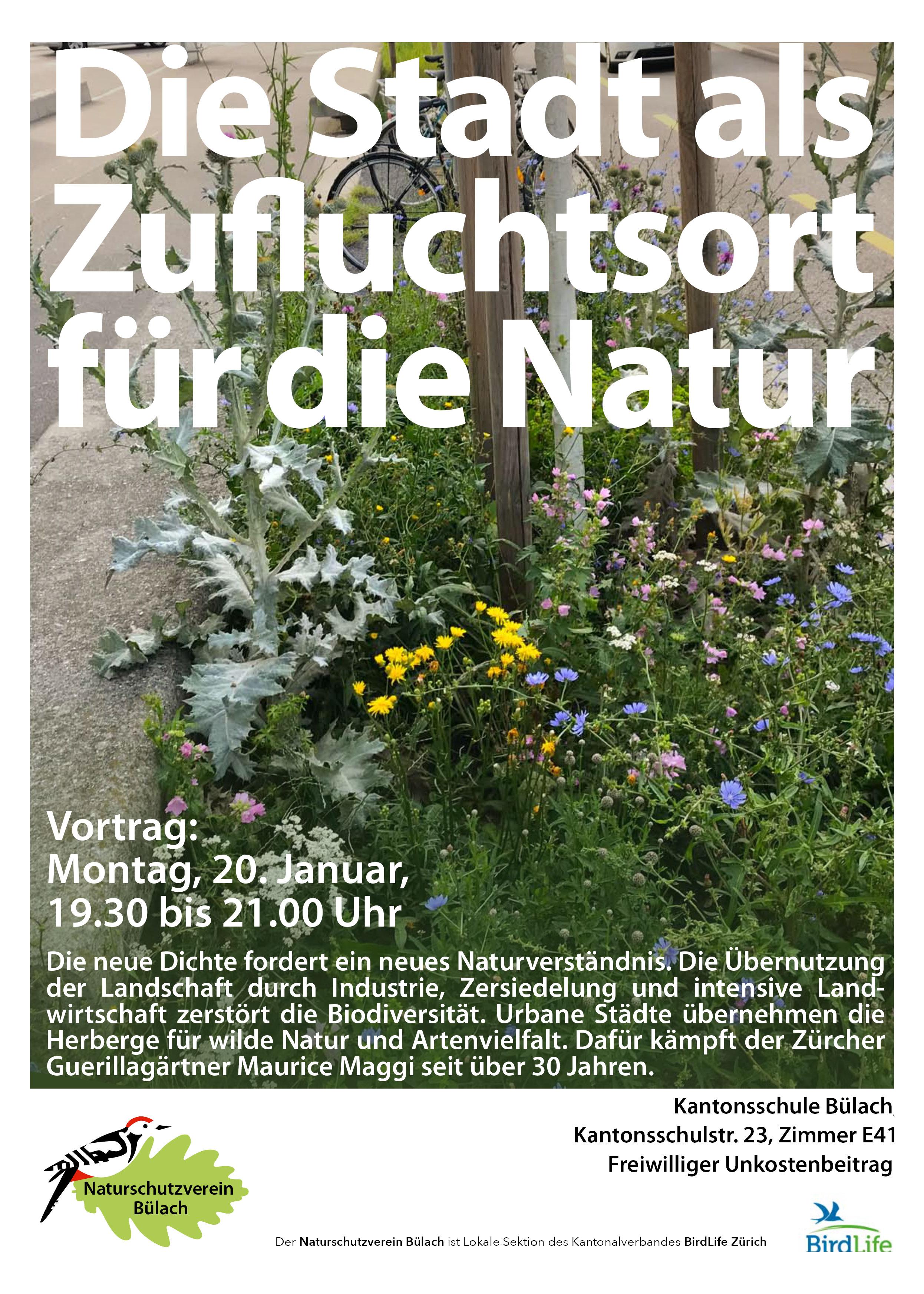Veranstaltungsflyer zum Event: Foto einer Blumenwiese