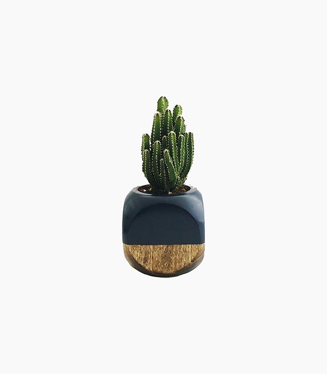 Sea & Asters Mini Geometric Planter - Black