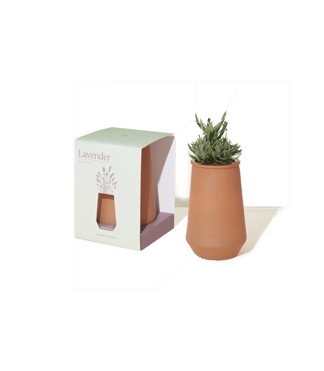 Modern Sprout Tapered Tumbler Grow Kit Lavender