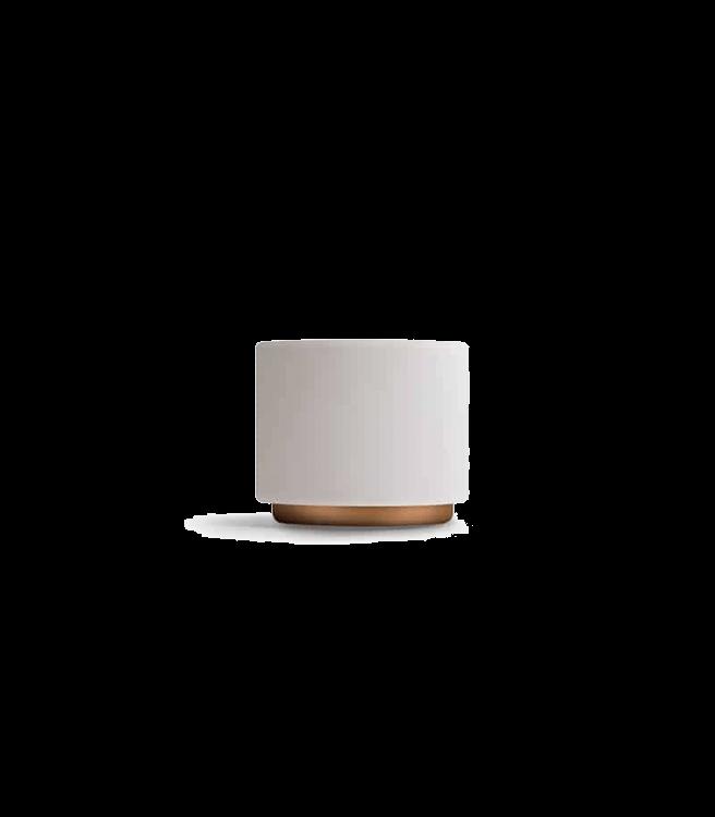 Fellow Monty Milk Art Cups 6.5oz - Matte White