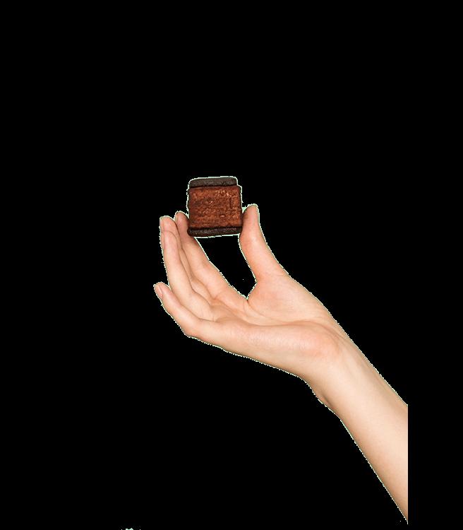 Malvi Chocolate Malvi S'mores
