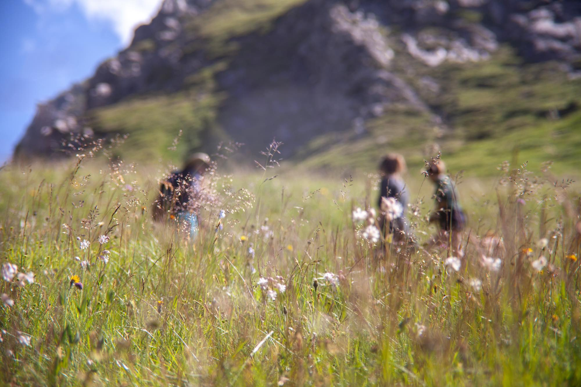 springtime in the Austrian Alps East Tirol