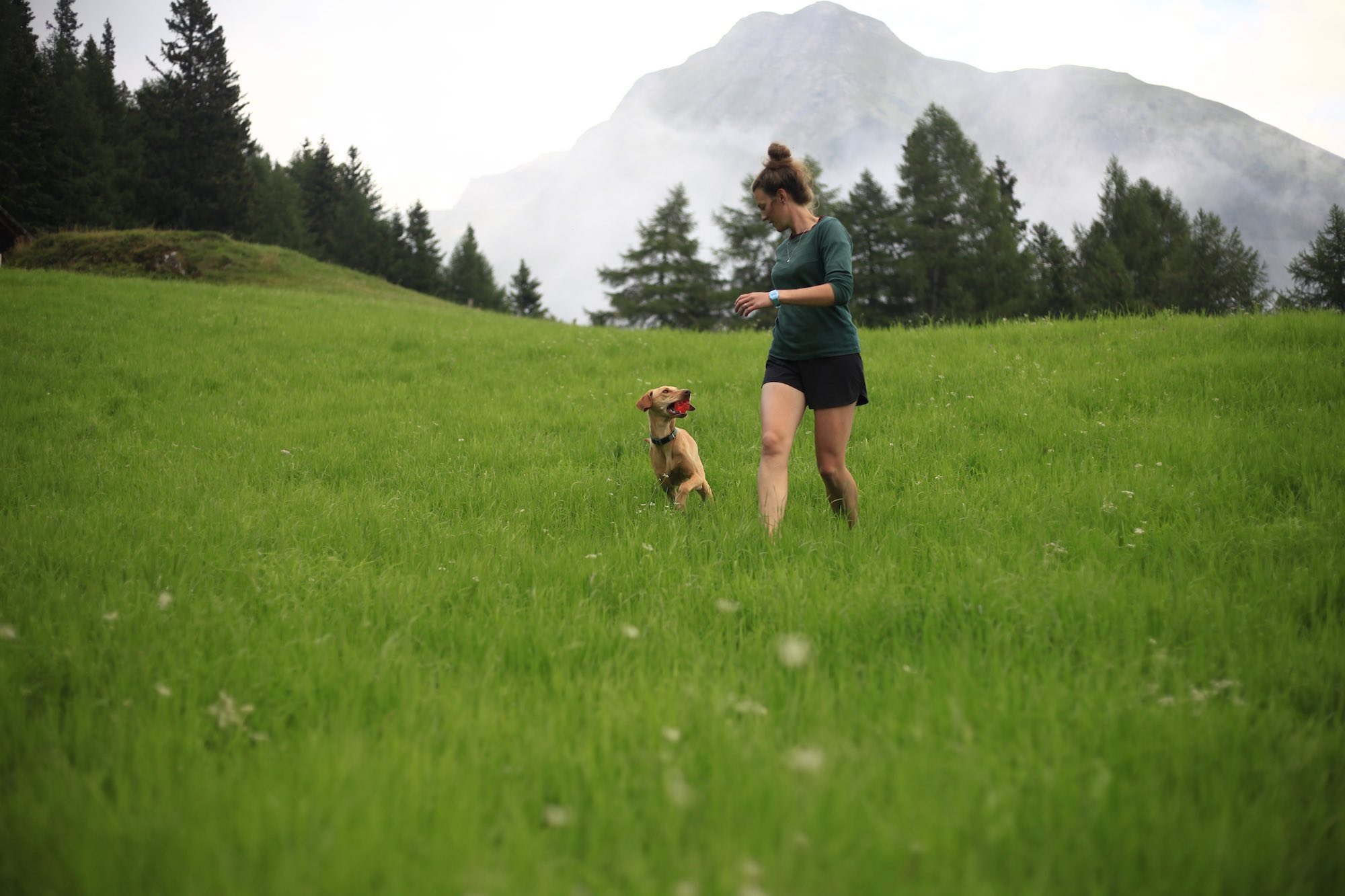 Escaping the crowds in the mountains of Austria