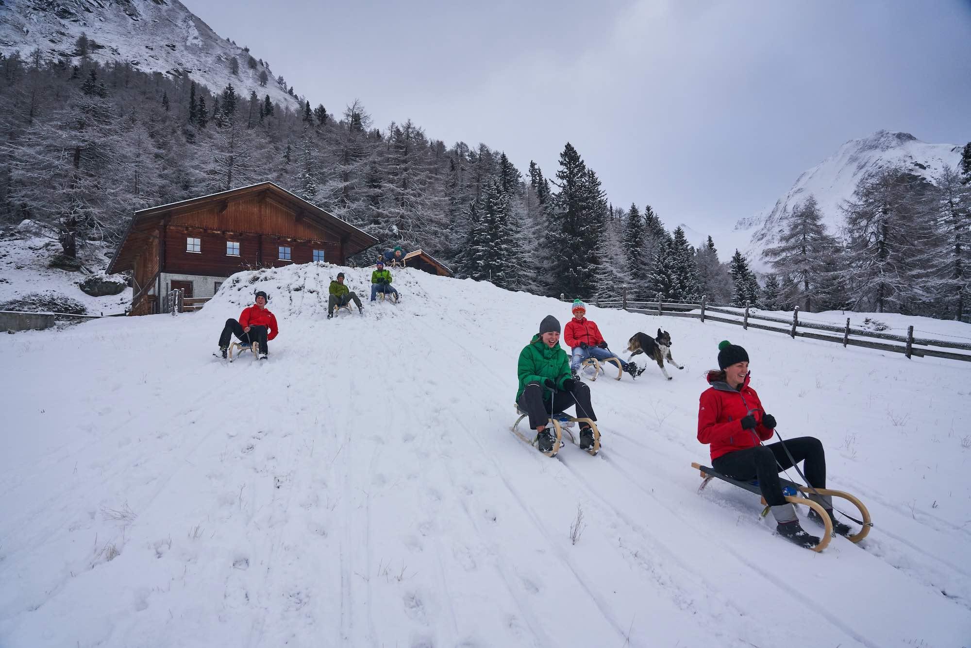 Toboggan race in the Austrian Alps
