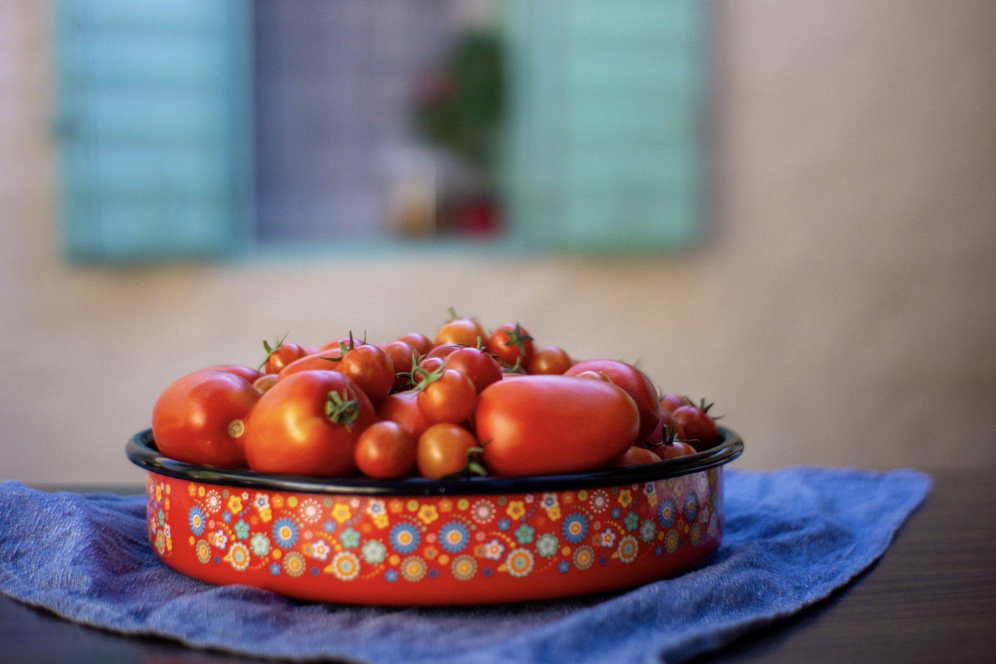 Seasonal Summer Tomatoes, Vis Island, Croatia
