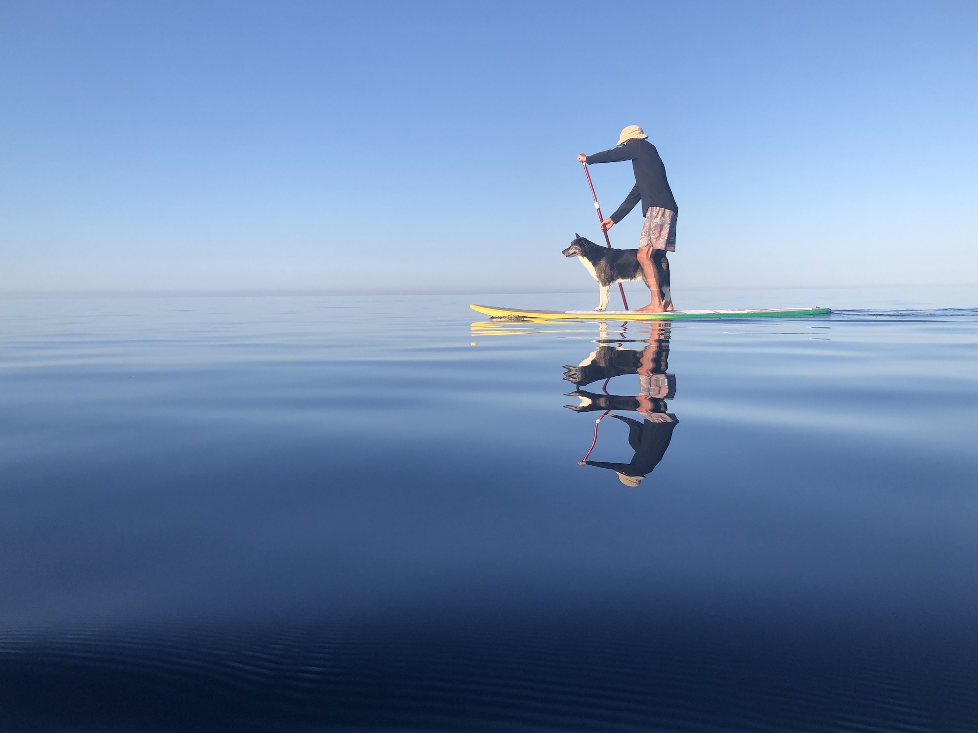 Our dog loves the Paddleboard, Vis Island