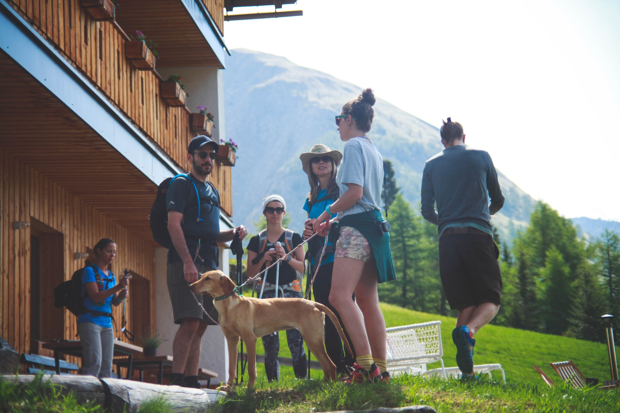 Vegan Hiking Holiday in Austria at MoaAlm