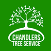chandlers tree service