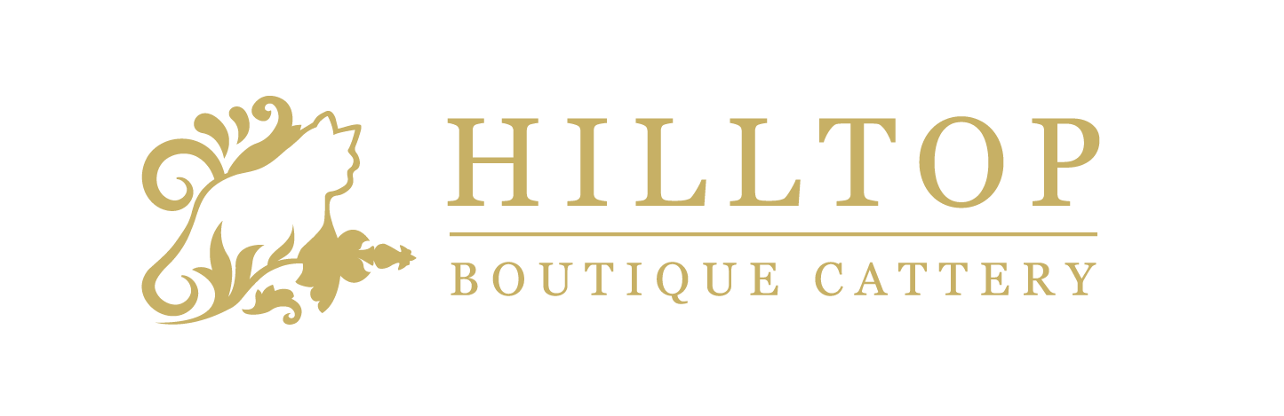 Hilltop Boutique Cattery Logo