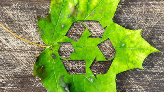 The Role of Sustainable Shipping in a Circular Economy