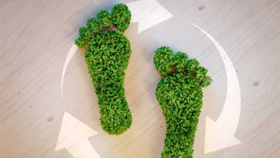 9 Ways to Reduce Your Business' Carbon Footprint
