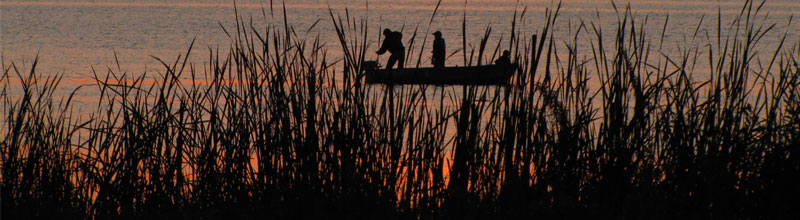 fishermen on lake at sunset through the reeds