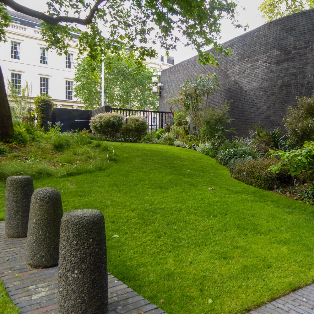 London Core Review - Royal College Of Physicians - Medicinal Garden Gallery - Picture 14
