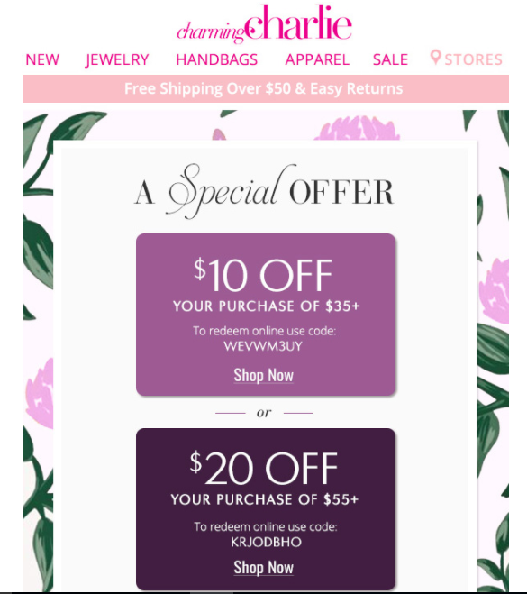 Charming Charlie's special offer email for customer retention