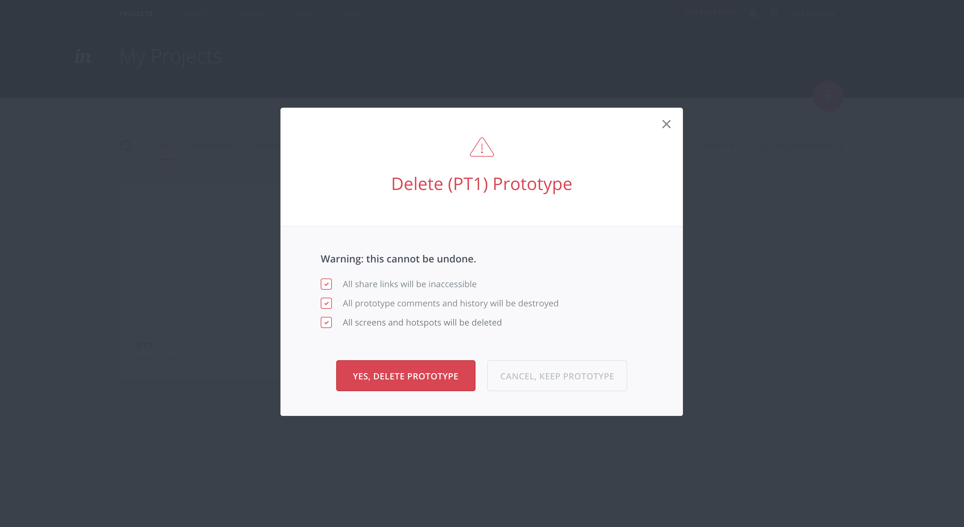 "This is a screenshot of a modal window that requires user action and confirmation before deleting data. It has the header ""delete (PT1) prototype"" and requires user input to close the modal."