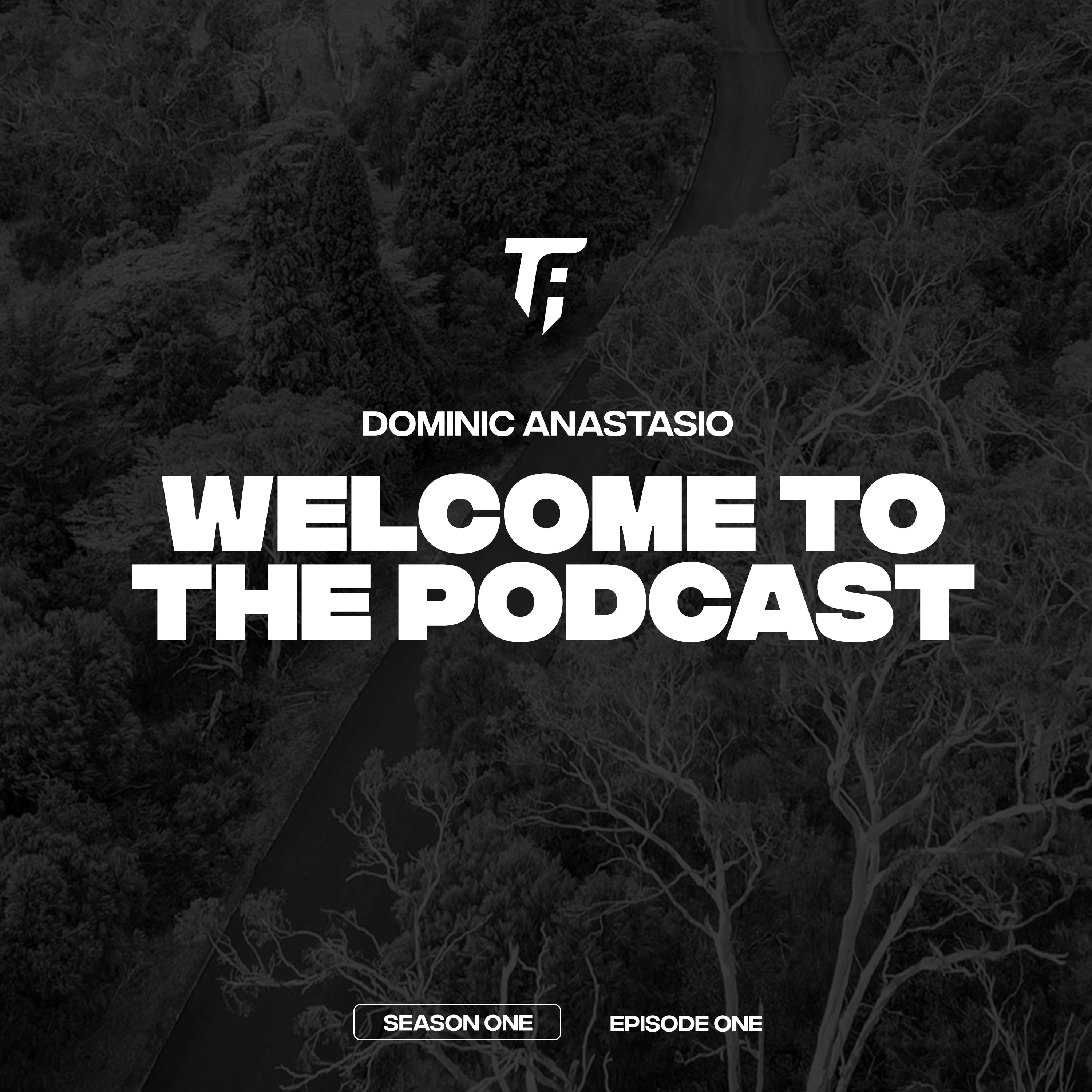 Welcome To The Podcast