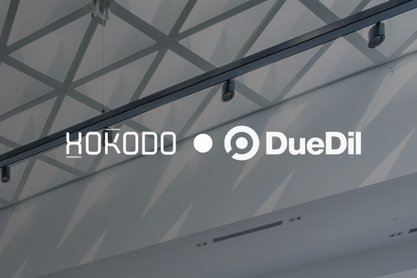 How Hokodo is transforming insurance for SMEs with the DueDil API