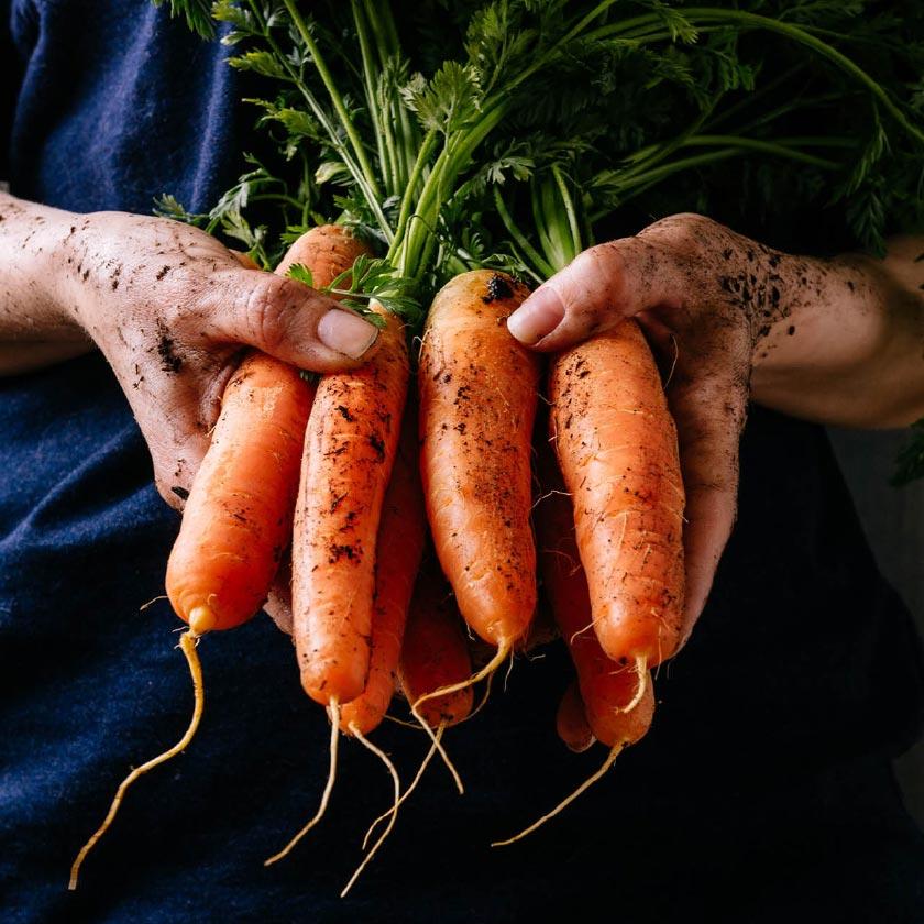 Pete's Organic.