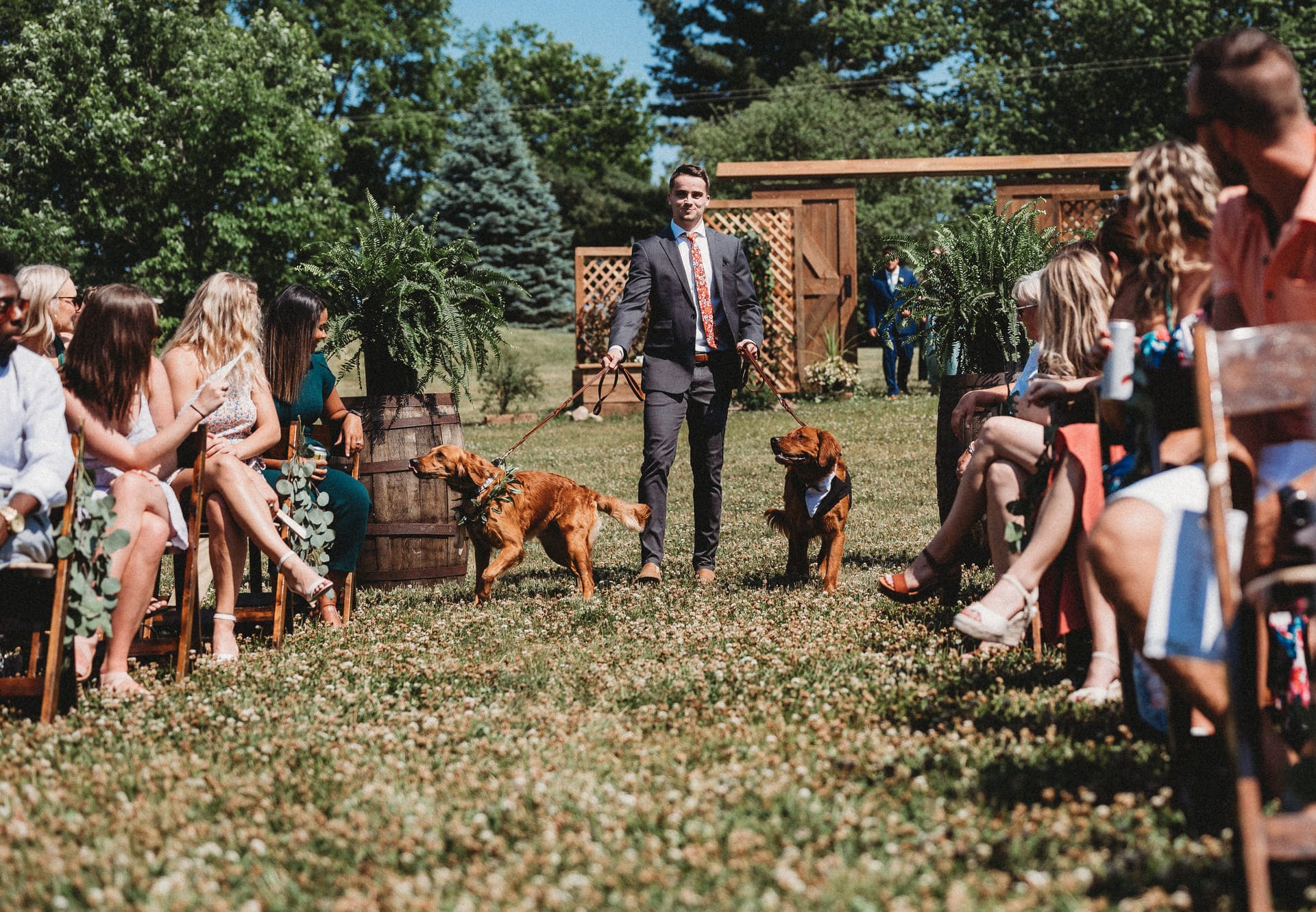 Dogs Richland Michigan Wedding Photography