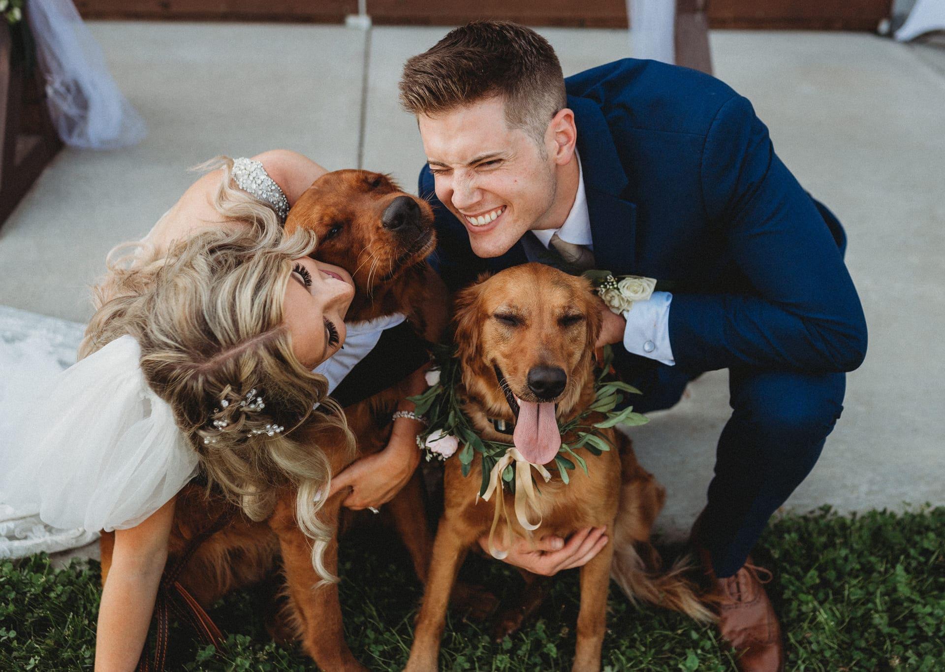 Brides Dogs Richland Michigan Wedding Photography