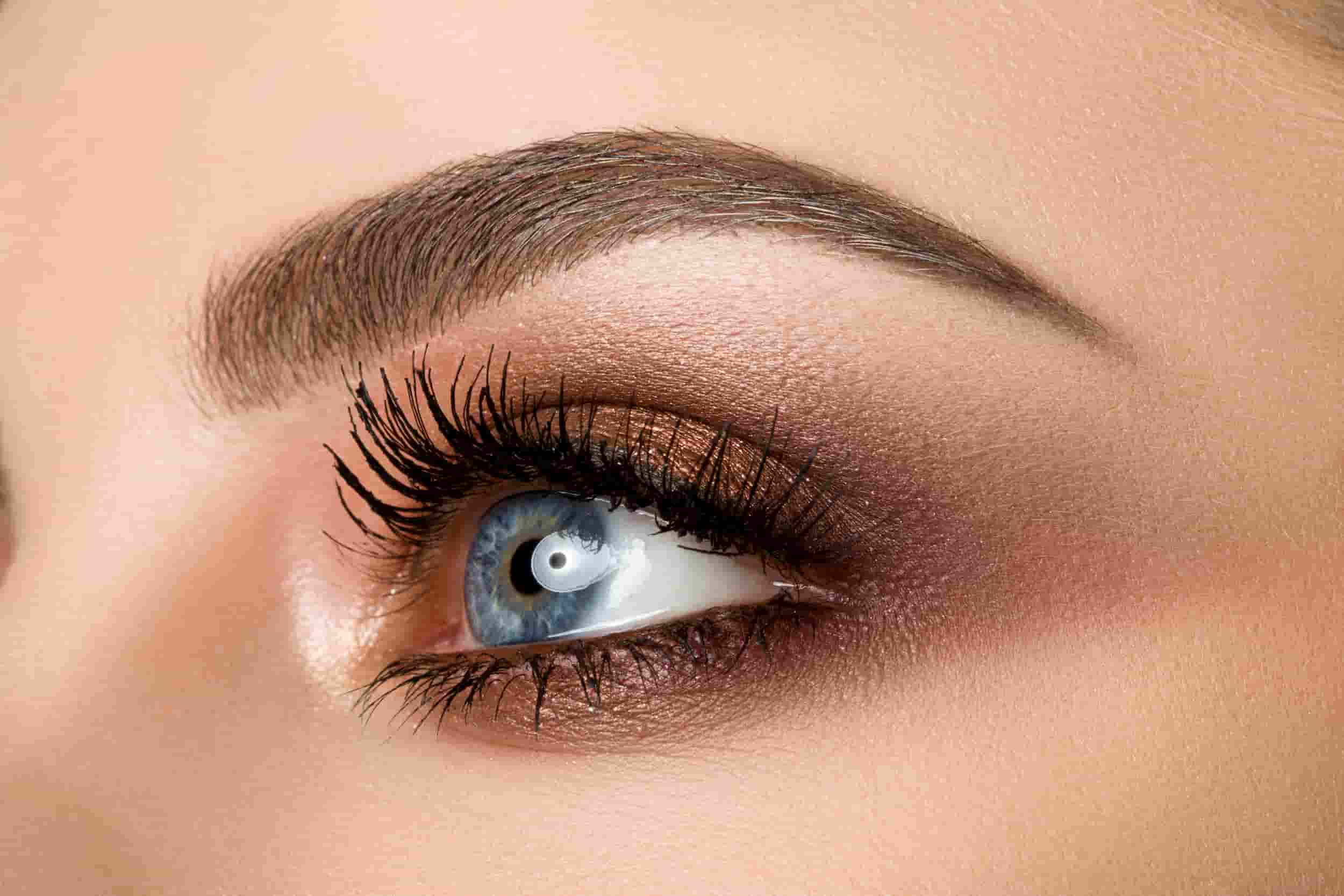 Eye Brows & Lash