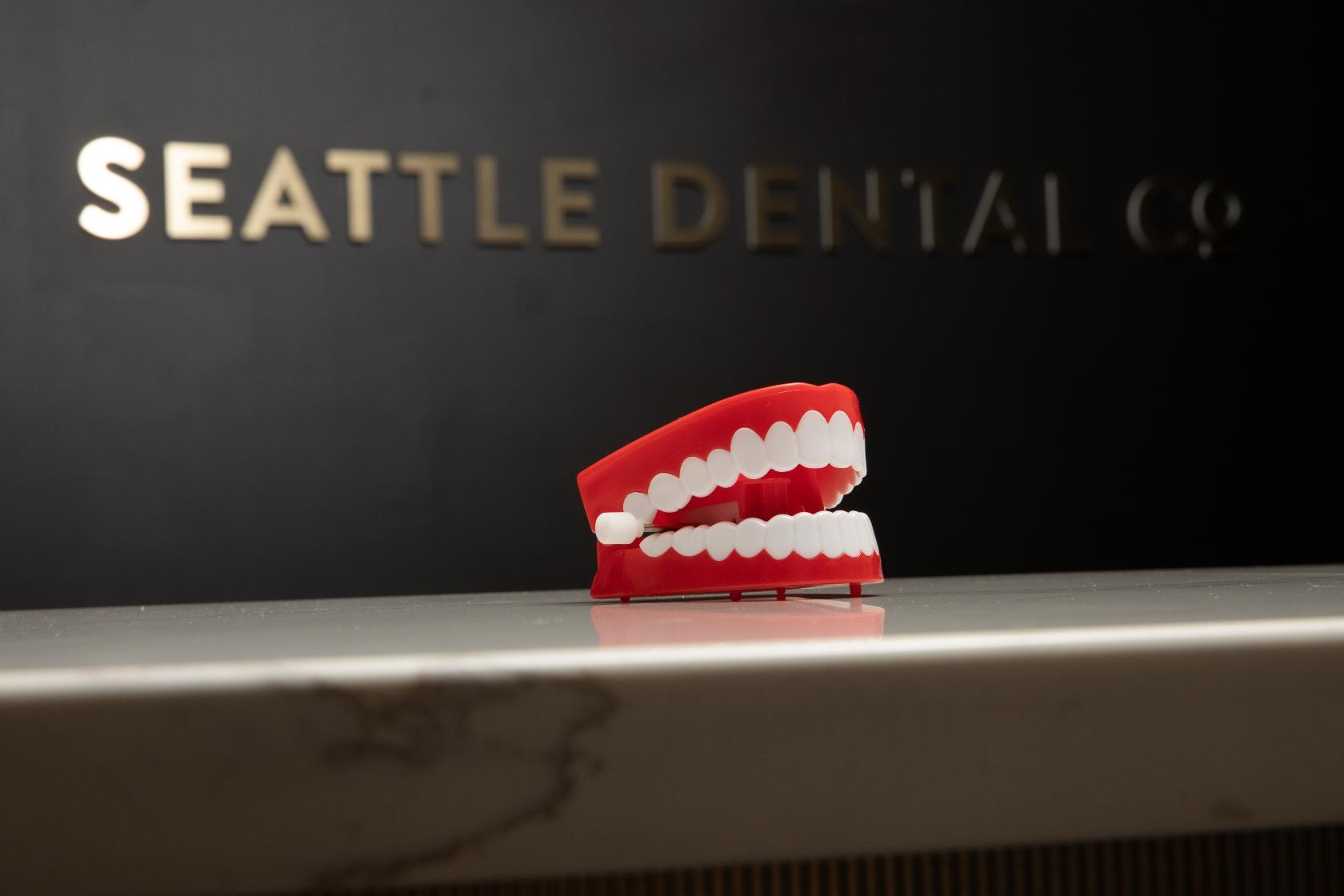Teeth model in front of Seattle Dental Co.