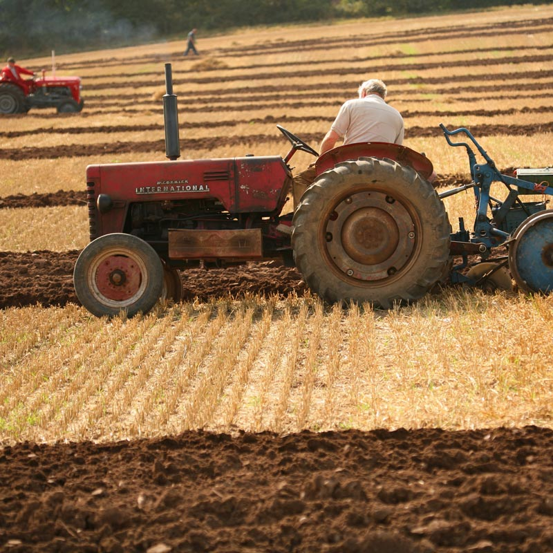 East Kent Ploughing Match