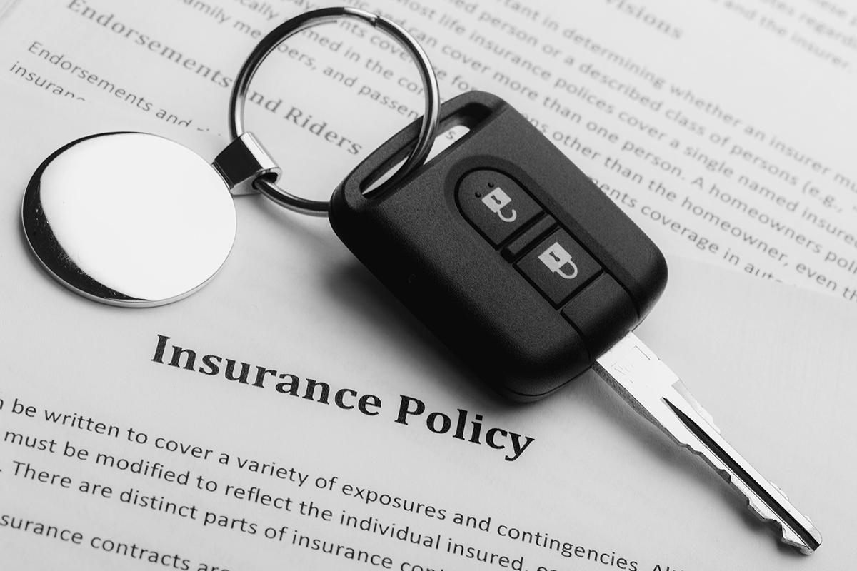 Kimiko-Zoellner AAA Insurance Agency - Insurance 101 thumbnail image