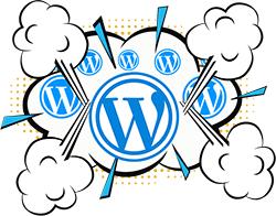 Worpress multisite web design skills