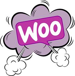 woocommerce webste design