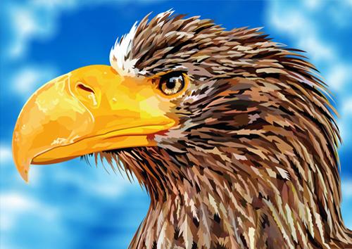 Bald Eagle - Aerial Daredevil - US