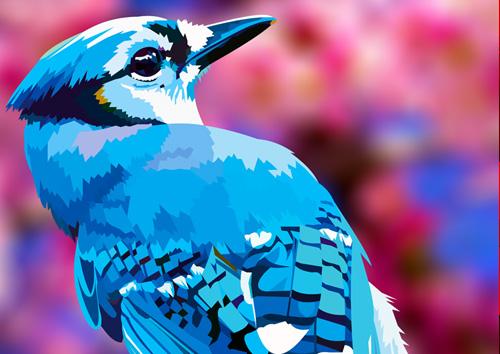 Blue Jay - NL