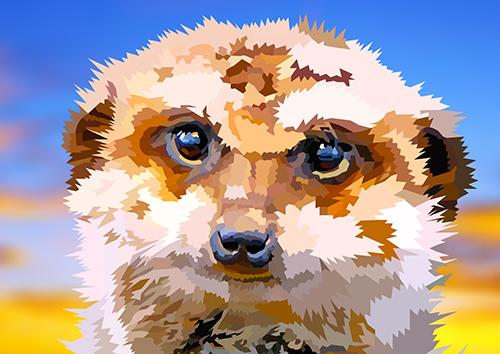 Meerkat - US