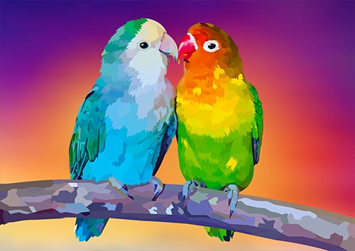 Lovebirds - NL