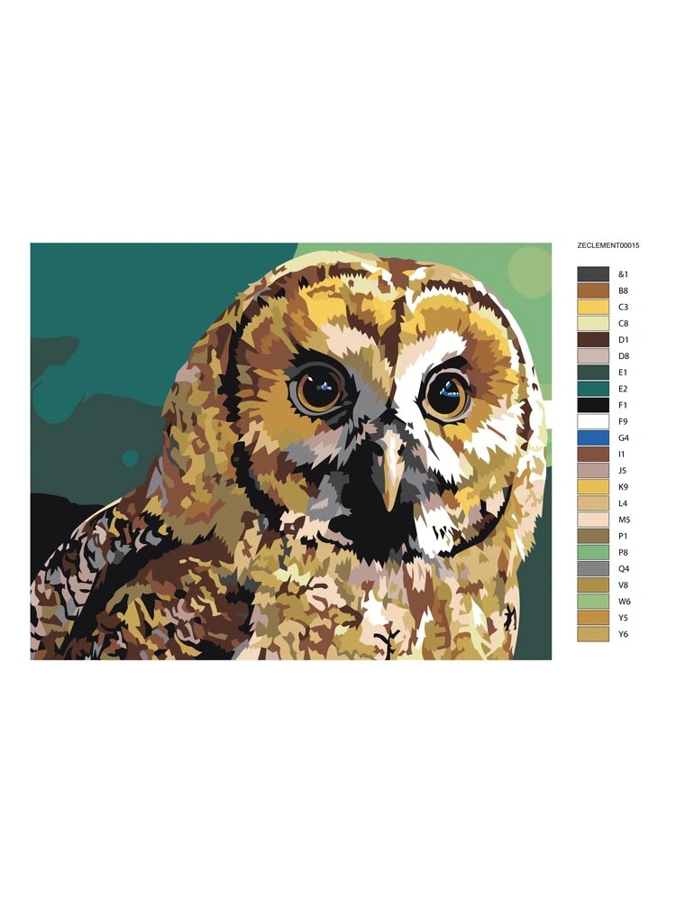 Uil - Painting by numbers