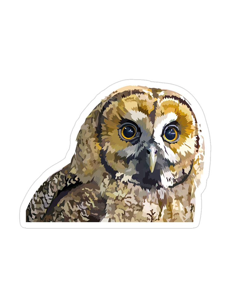 Eyes Of wisdom - Stickers