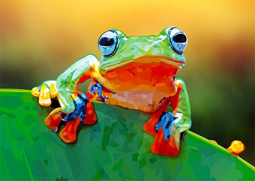 Tree frog - US