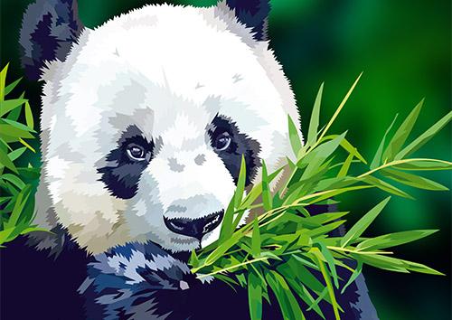 Panda-NL
