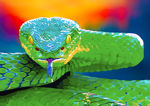 Tropical snake - US