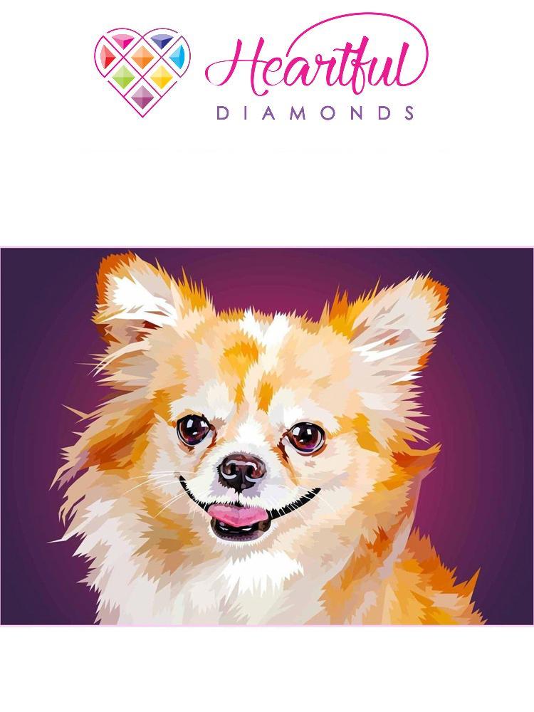 Chihuahua - Diamond painting