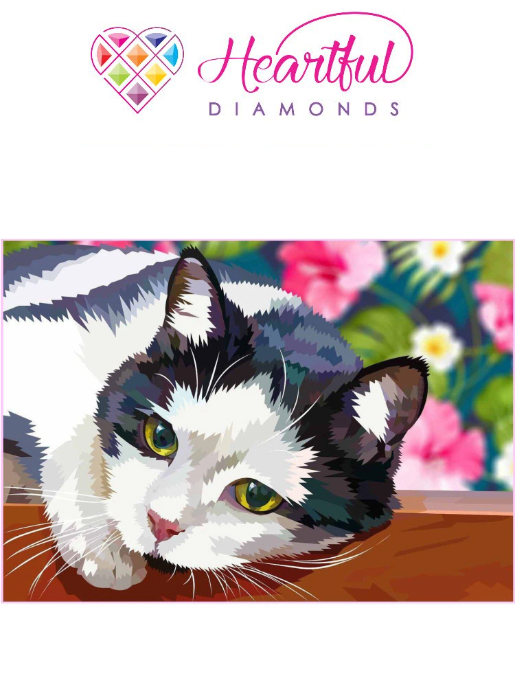 Garden cat - Diamond painting