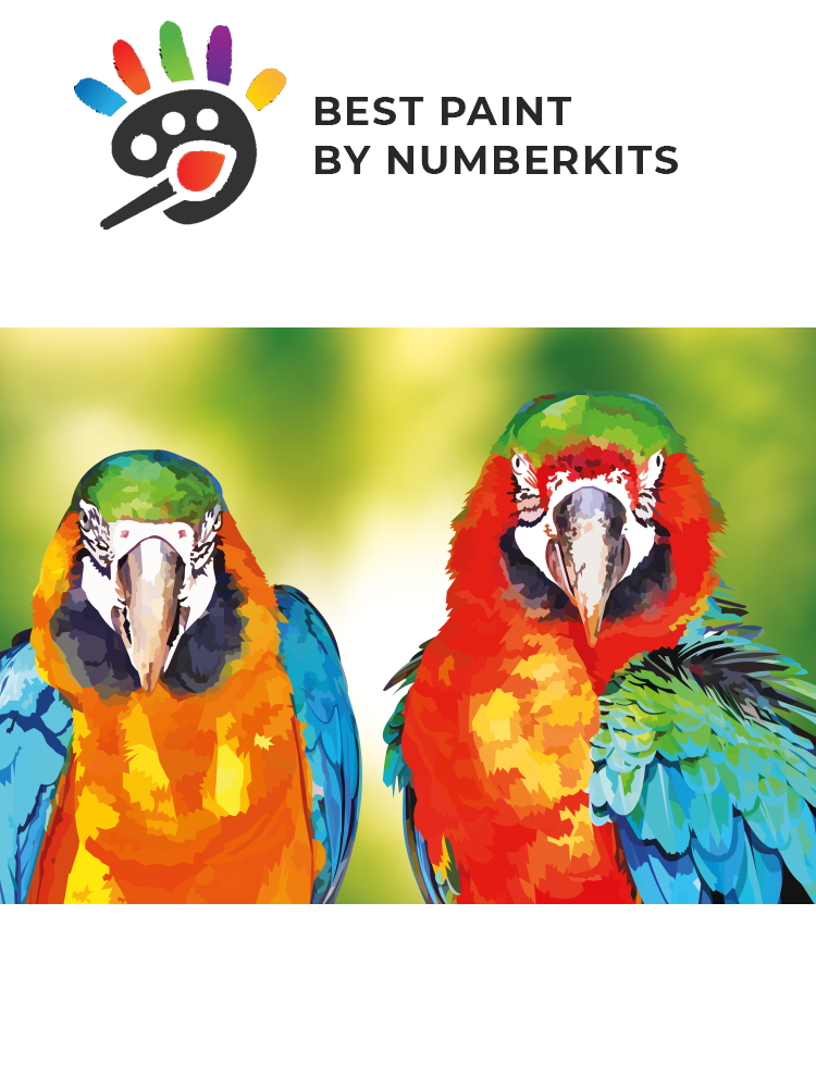 Two parrots - Paint by number