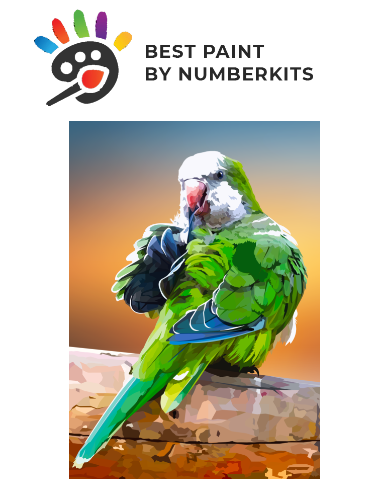 Little parrot - painting by numbers