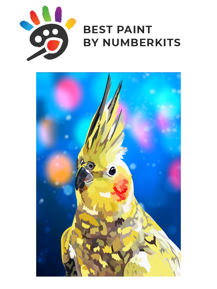 Cockatiel - painting by numbers