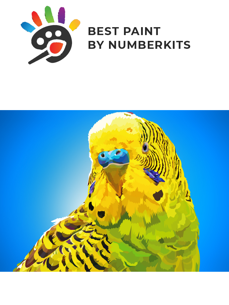 Parkiet - painting by numbers