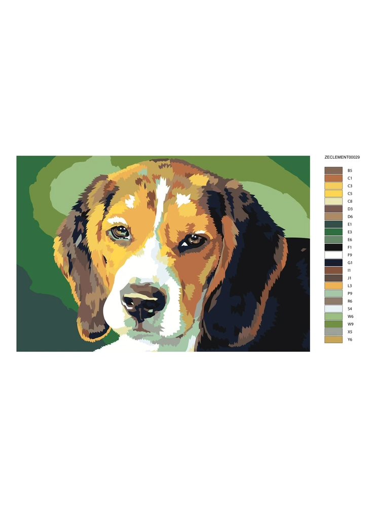 Beagle - painting by numbers