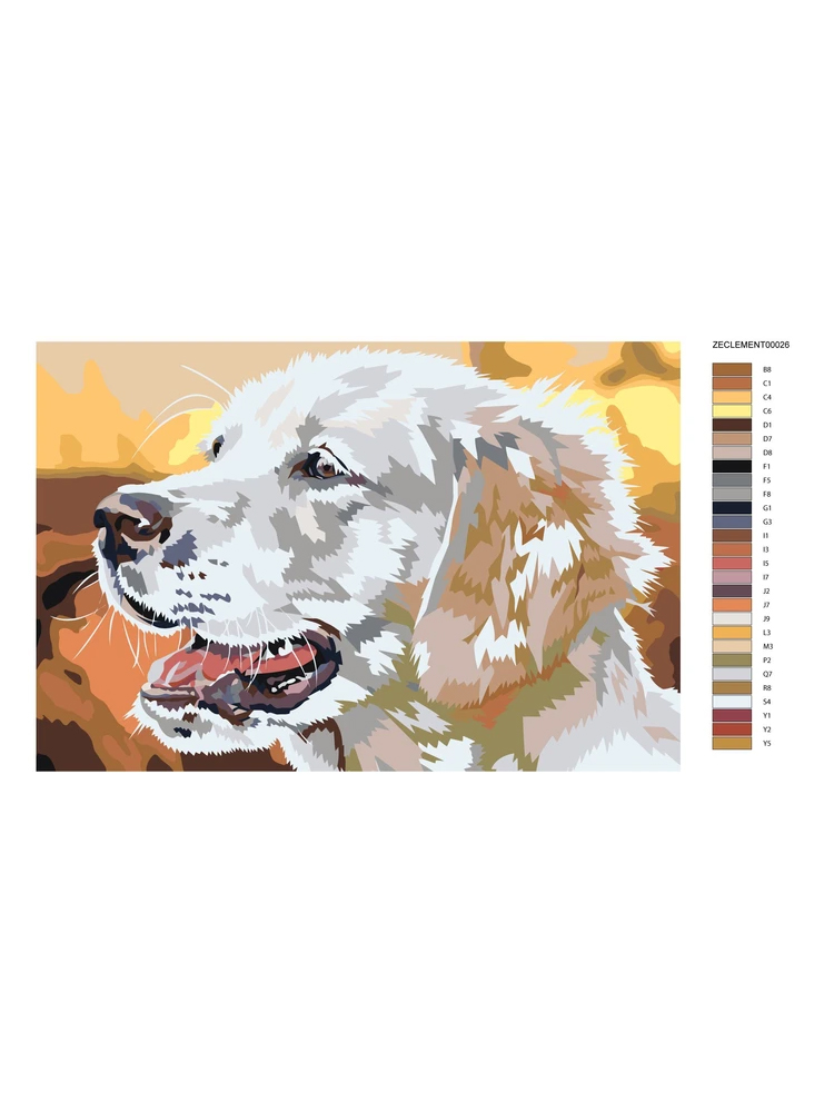 Labrador - Painting by numbers