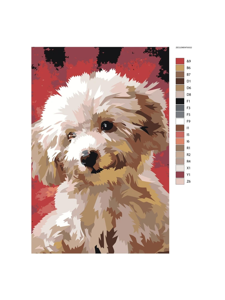 Poodle - painting by numbers