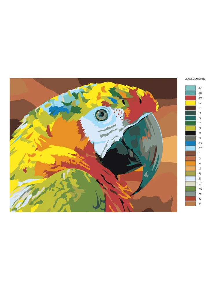 Parrot closeup - Painting by numbers